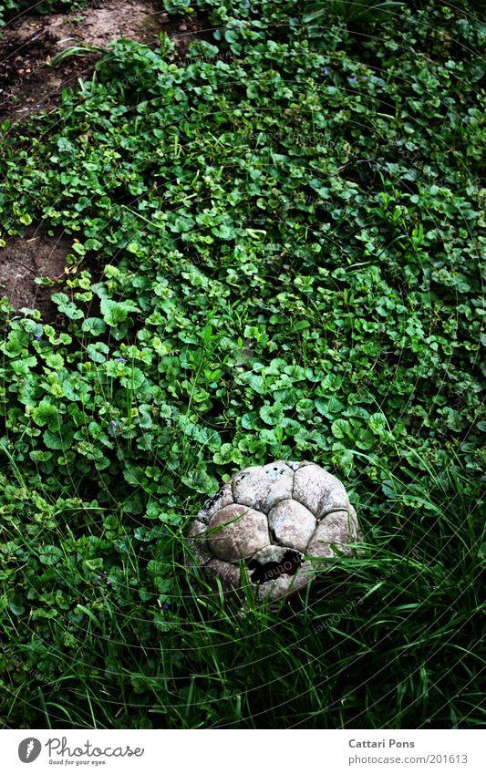 abgenutzt Freizeit & Hobby Fußball Ball Natur warten alt Armut dreckig gruselig hässlich kaputt rund grau weiß Ende Kindheit stagnierend Spielzeug vergessen