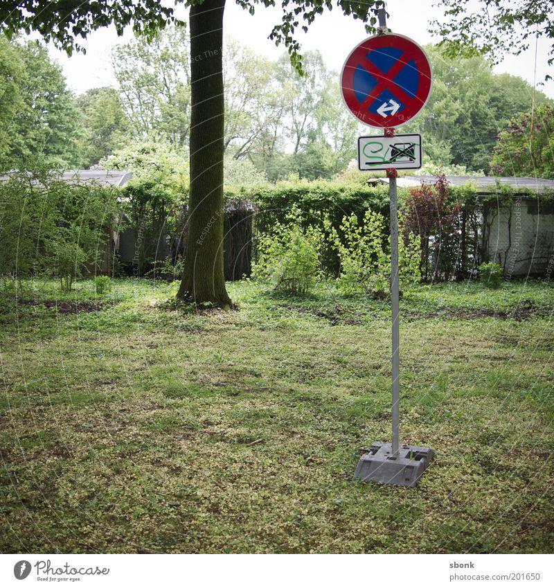 parkverbot im park Baum Wiese PKW Schilder & Markierungen stoppen Fahrzeug falsch parken Gesetze und Verordnungen Hinweis Verkehrsschild Straßenrand