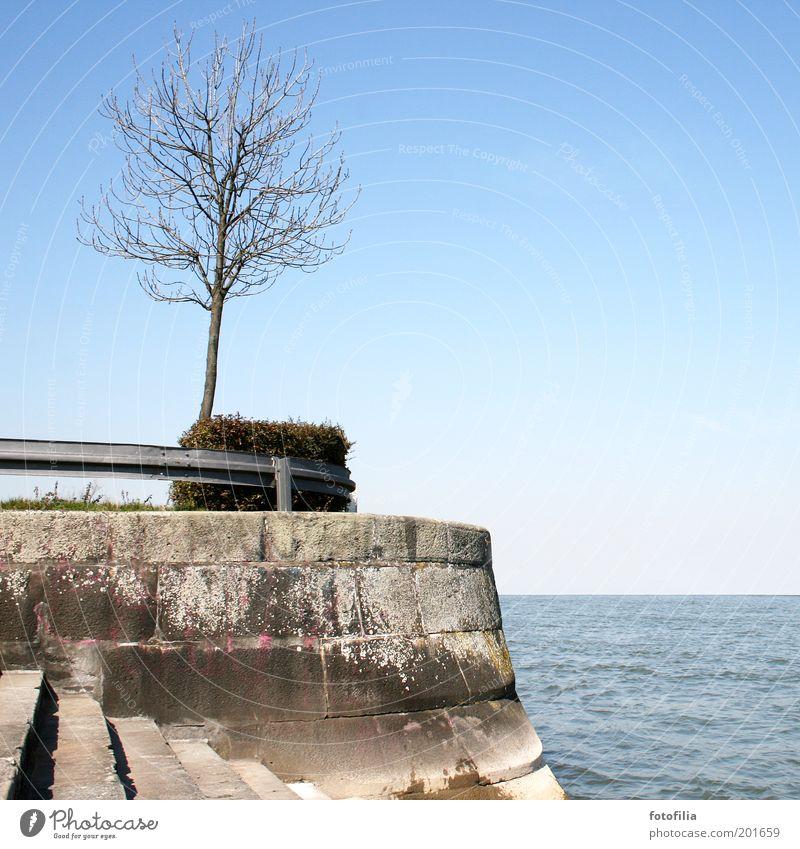 am ende der welt Ausflug Ferne Freiheit Umwelt Natur Landschaft Wasser Himmel Wolkenloser Himmel Sonnenlicht Klima Wetter Schönes Wetter Baum Küste Flussufer