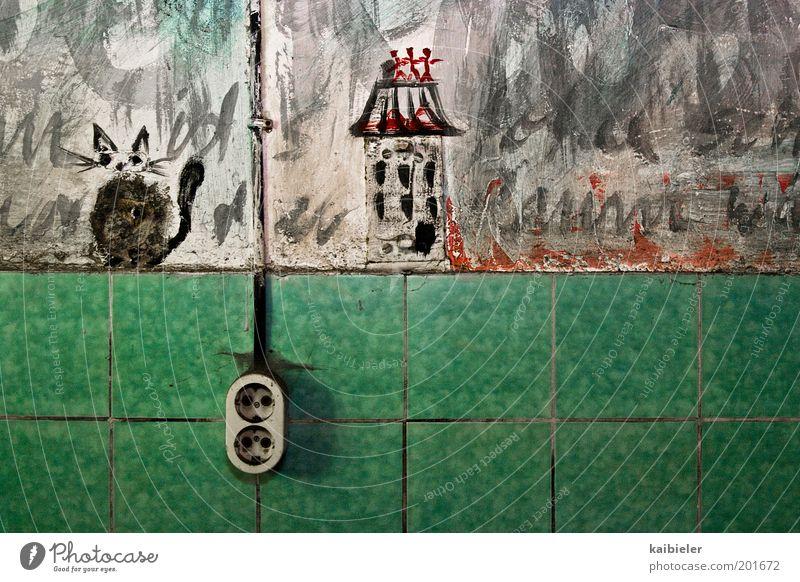 Hauskatze Jugendkultur Subkultur Fliesen u. Kacheln Bad Steckdose Haustier Katze Zeichen Graffiti zeichnen niedlich grün rot Surrealismus Verfall