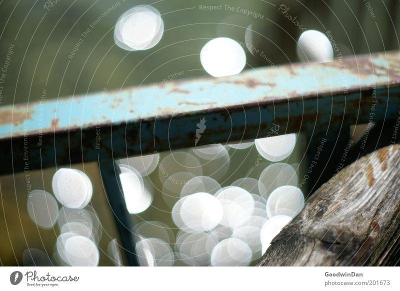 """""""Doch glaub mir, das Wasser glitzert"""" II Natur schön grün blau Holz Wärme Metall Umwelt authentisch Punkt außergewöhnlich Steg Lichtpunkt"""
