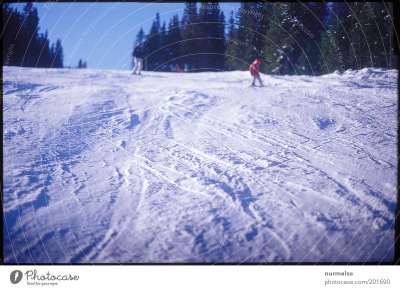 die letzte Abfahrt für dieses . . . Mensch Kind Natur Baum Ferien & Urlaub & Reisen Winter Wald Umwelt Landschaft kalt Schnee Sport Kindheit Freizeit & Hobby