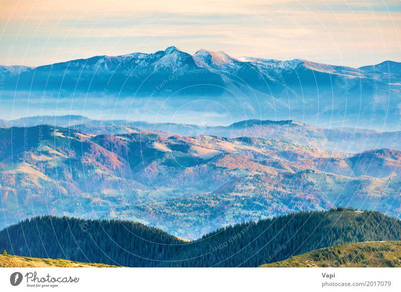 Berggipfel im Schnee Himmel Natur Ferien & Urlaub & Reisen blau Sommer Farbe grün weiß Baum Landschaft rot Wolken Ferne Wald Berge u. Gebirge Umwelt