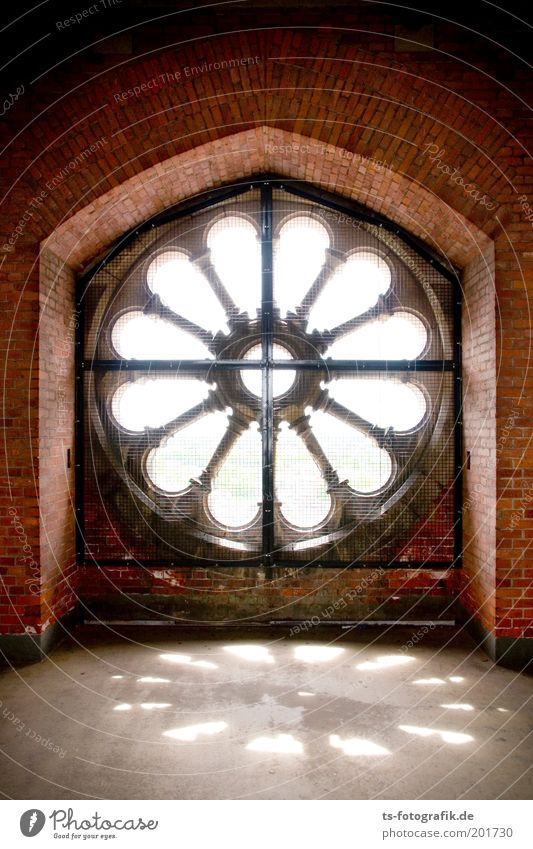 Rosette schön weiß rot Fenster Stein Gebäude Religion & Glaube Metall Hoffnung Kirche Kultur Christliches Kreuz Backstein Dom