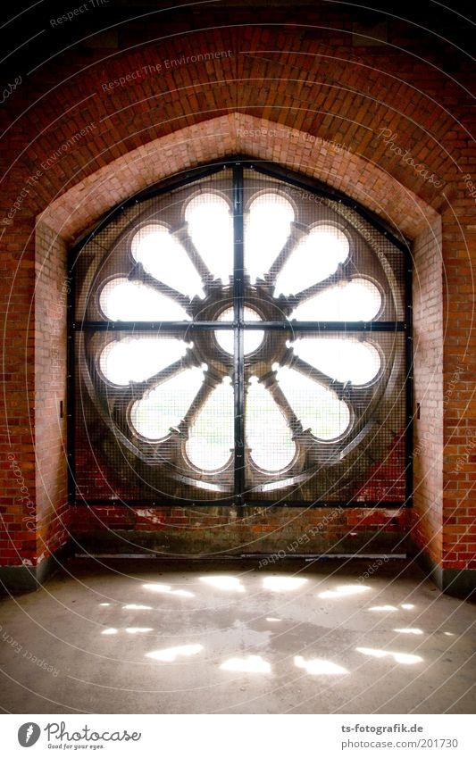 Rosette schön weiß rot Fenster Stein Gebäude Religion & Glaube Metall Hoffnung Kirche Kultur Christliches Kreuz Backstein Glaube Dom