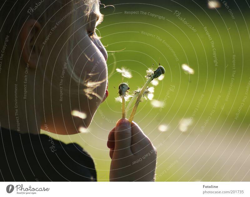 So, alle unterwegs Mensch Kind Natur Hand Pflanze Mädchen Sommer Blume Gesicht Wiese Kopf Wärme Haare & Frisuren Garten Frühling Luft