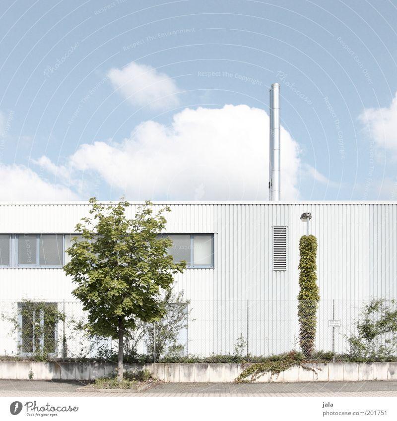 Produktionsstätte Himmel weiß Baum grün blau Pflanze Wolken Fenster Gebäude hell Fassade Industrie modern ästhetisch Industriefotografie Fabrik