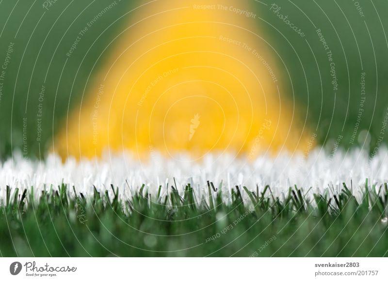 Kunstrasen weiß grün Sommer Farbe gelb Sport Freizeit & Hobby Schilder & Markierungen Fußball Rasen Sportrasen Makroaufnahme Sportveranstaltung Stadion