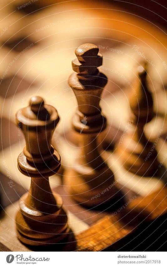 Schachspiel I Freizeit & Hobby Spielen Brettspiel Denken Schachfigur Figur Denksportaufgabe Taktik Dame König Farbfoto Innenaufnahme Nahaufnahme Menschenleer