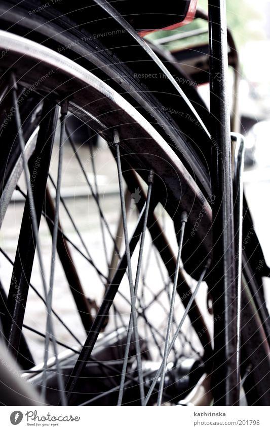 Absolute Spontanität Fahrrad einfach Detailaufnahme Strukturen & Formen Menschenleer Tag Froschperspektive Rad Speichen Nahaufnahme Schutzblech Außenaufnahme