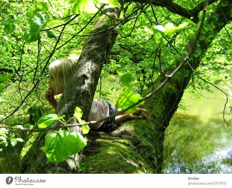 Hausbaum Spielen Abenteuer Kind Mädchen Kindheit 1 Mensch 3-8 Jahre Natur Wasser Sommer Schönes Wetter Baum Moos Wald Seeufer genießen liegen Blick blond Glück