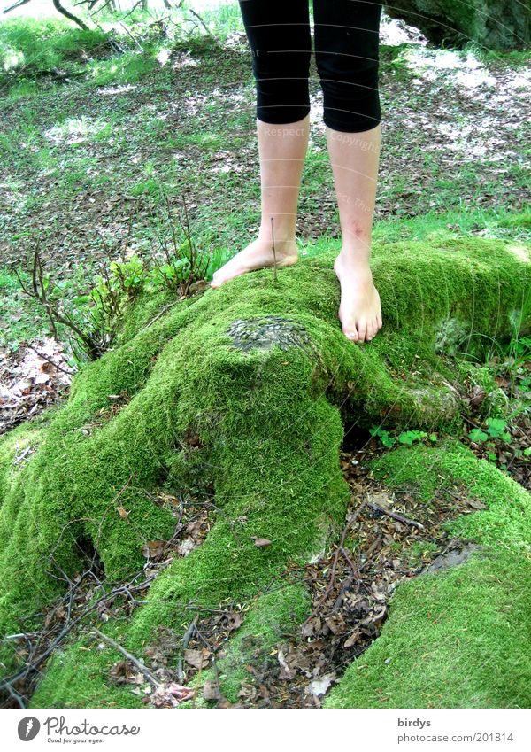 kuschelig Mensch Natur Jugendliche Sommer feminin Beine Junge Frau Fuß Freizeit & Hobby natürlich frisch stehen Schönes Wetter weich berühren dünn