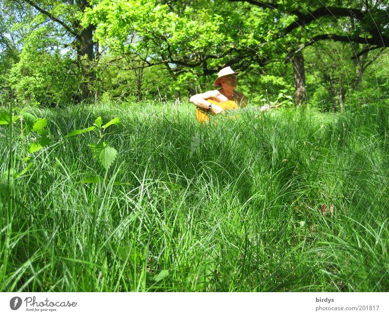 Wald - und Wiesenmusiker Freude Sommer Musik Musiker Gitarre Schönes Wetter Gras Hut genießen frei natürlich positiv grün Glück Zufriedenheit friedlich Erholung