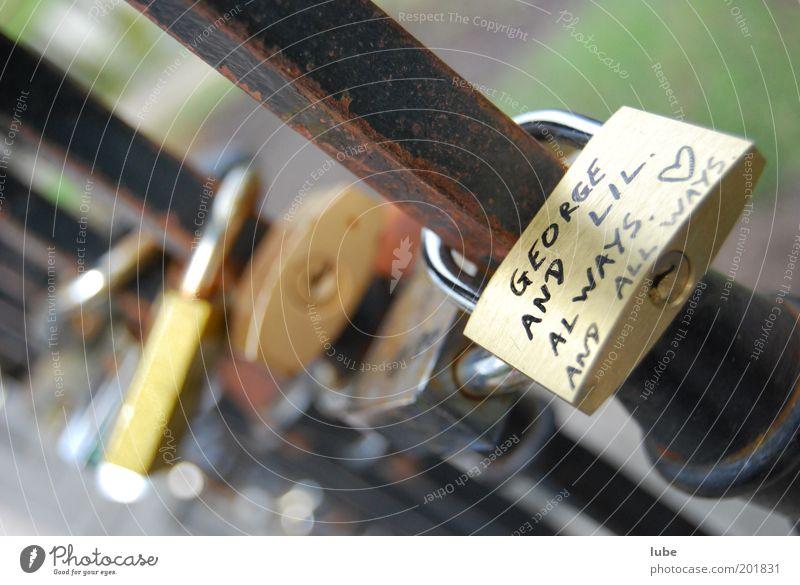 Ewige Liebe Gefühle Paar Zusammensein Metall Herz Tür geschlossen Sicherheit Schutz Vertrauen Rost Schloss Geborgenheit Zusammenhalt schließen
