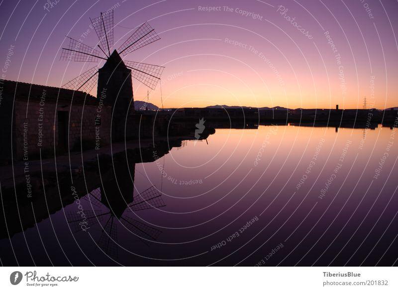 Salinen bei Trapani Wasser Gebäude Landschaft Stimmung Sonnenuntergang violett Schönes Wetter Teich Museum Italien Windmühle Licht Weitwinkel Mühle Sizilien Wolkenloser Himmel