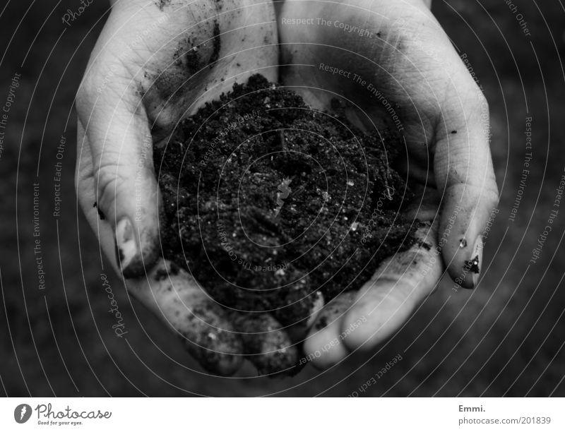 mother earth Natur Hand Umwelt Erde dreckig Klima Finger Wachstum Landwirtschaft Umweltschutz Gartenarbeit Mensch