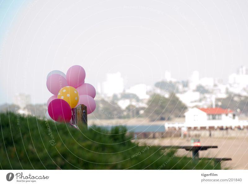 Ballons am Strand Luftballon rosa rot gelb weiß Skyline Gebäude Haus Sand Gras Grasnarbe grasbewachsene Kuppe Anlegestelle San Francisco Freude Tisch angebunden