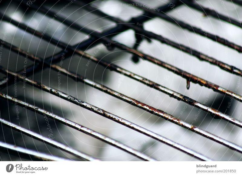 Get It Hot Grill Metall grau schwarz silber weiß Fett Rost Ernährung Sommer Farbfoto Nahaufnahme Menschenleer Tag Schwache Tiefenschärfe dreckig unhygienisch