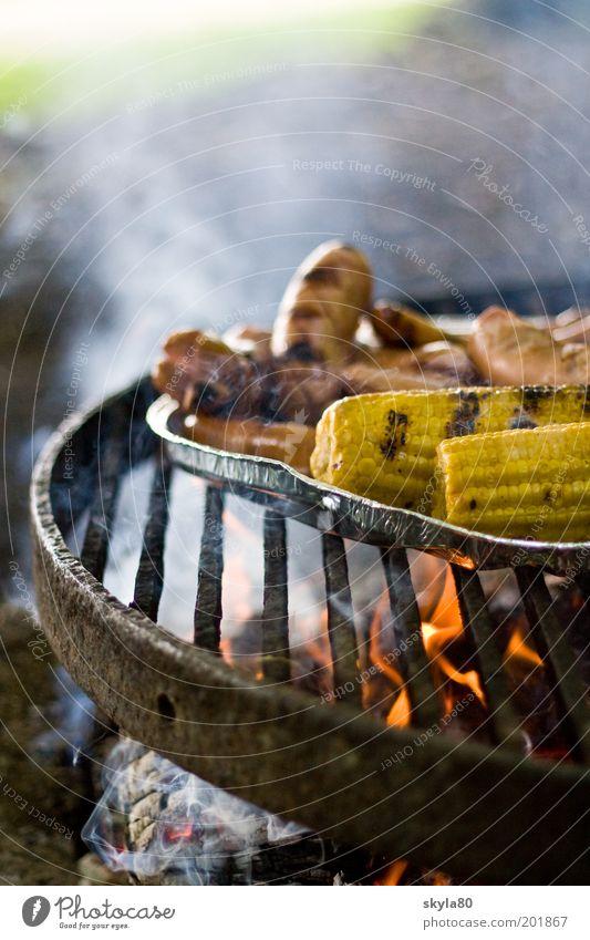 Mahlzeit Grillrost heiß Grillen Maiskolben Wurstwaren Rauchwolke Feuer Fleisch Grillsaison Grillkohle Sommer Abendessen Lebensmittel Ernährung Appetit & Hunger
