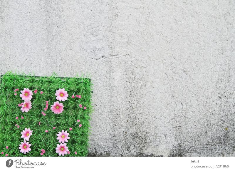 BLUMENECK Blume Blüte Mauer Wand Fassade Dekoration & Verzierung Kitsch Krimskrams Beton Kunststoff grau grün rosa Ecke Plastikwelt Kunstrasen Matten Zierde