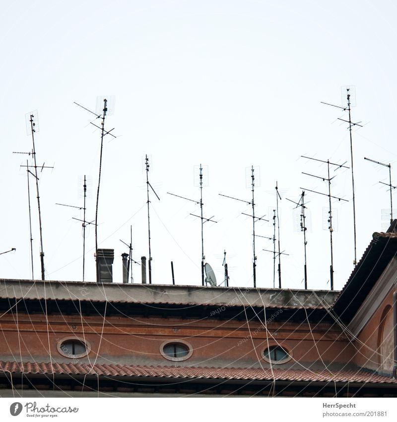 Empfangsbereit Haus Bauwerk Gebäude Fassade Fenster Dach Schornstein Antenne braun grau weiß bizarr chaotisch Kommunizieren Konkurrenz Kabel durcheinander