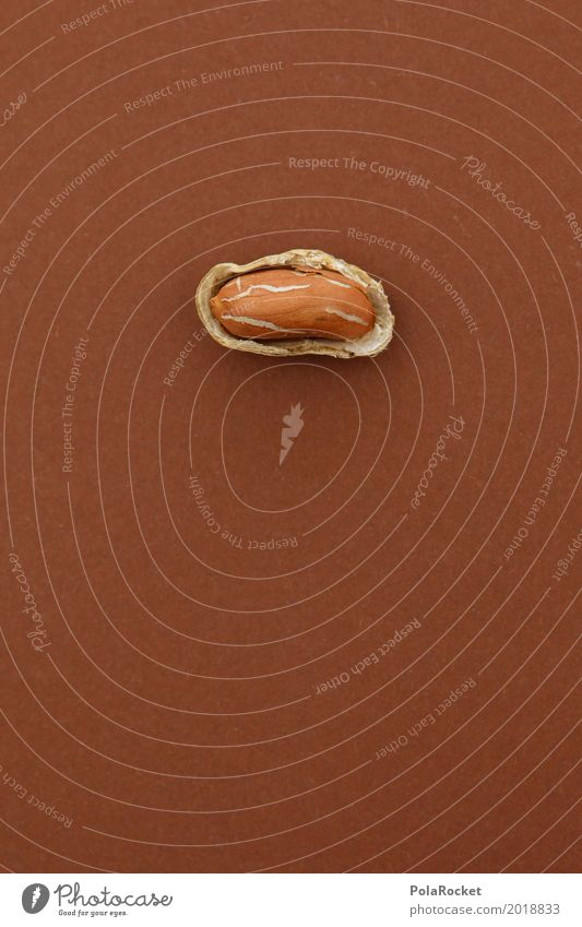 #A# Weicher Kern I Kunst Kunstwerk ästhetisch Nuss Nussschale nußbraun Erdnuss Erdnussernte offen 1 lecker Gesunde Ernährung Snack Farbfoto Gedeckte Farben