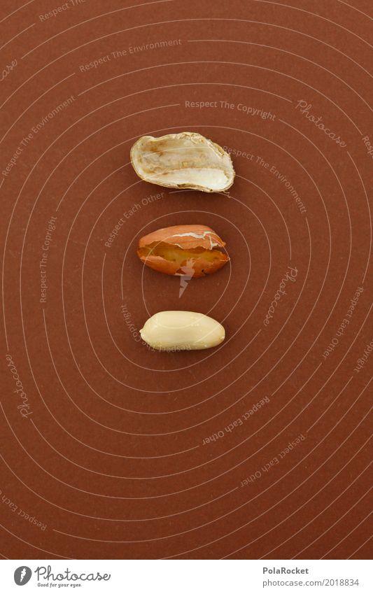 #A# Komponenten Kunst braun ästhetisch 3 Innerhalb (Position) Kunstwerk Nuss Erdnuss Nussschale nußbraun Erdnussernte