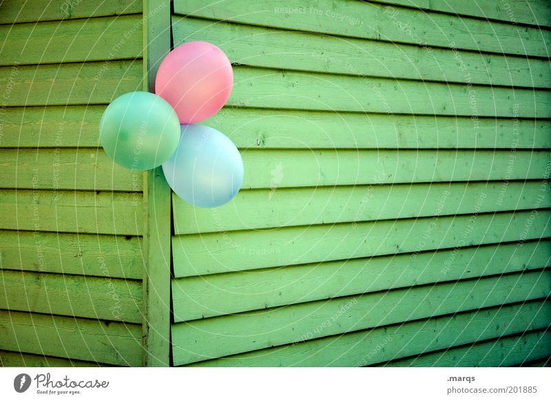 Kindergeburtstag Freude Glück Party Veranstaltung Feste & Feiern Jubiläum Mauer Wand Luftballon Holz Linie hängen positiv blau grün rosa Gefühle Fröhlichkeit