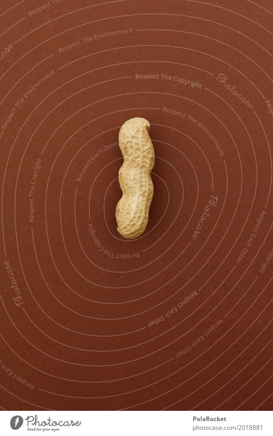 #A# Harte Nuss III Kunst Kunstwerk ästhetisch Nussschale nußbraun Erdnuss Erdnussernte geschlossen lecker Snack Gesunde Ernährung Farbfoto Gedeckte Farben