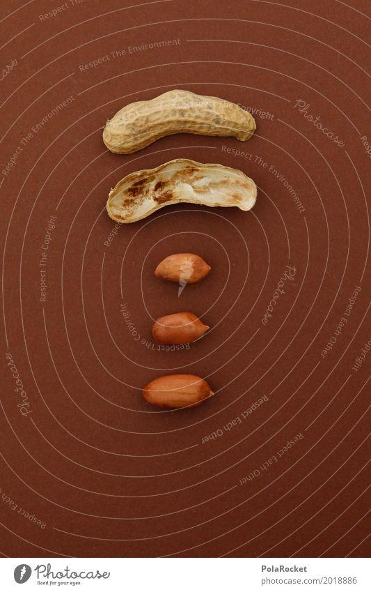 #A# 3 in 1 Kunst braun ästhetisch Teile u. Stücke Nuss gemischt Ergebnis Erdnuss gebastelt Nussschale Nussknacker nußbraun Erdnussernte