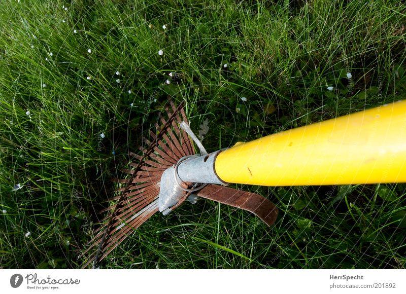 Rasen kämmen Gras Garten Metall Rost Kunststoff gelb grün Gartenarbeit Gartengeräte Rechen Farbfoto Außenaufnahme Nahaufnahme Detailaufnahme Textfreiraum links