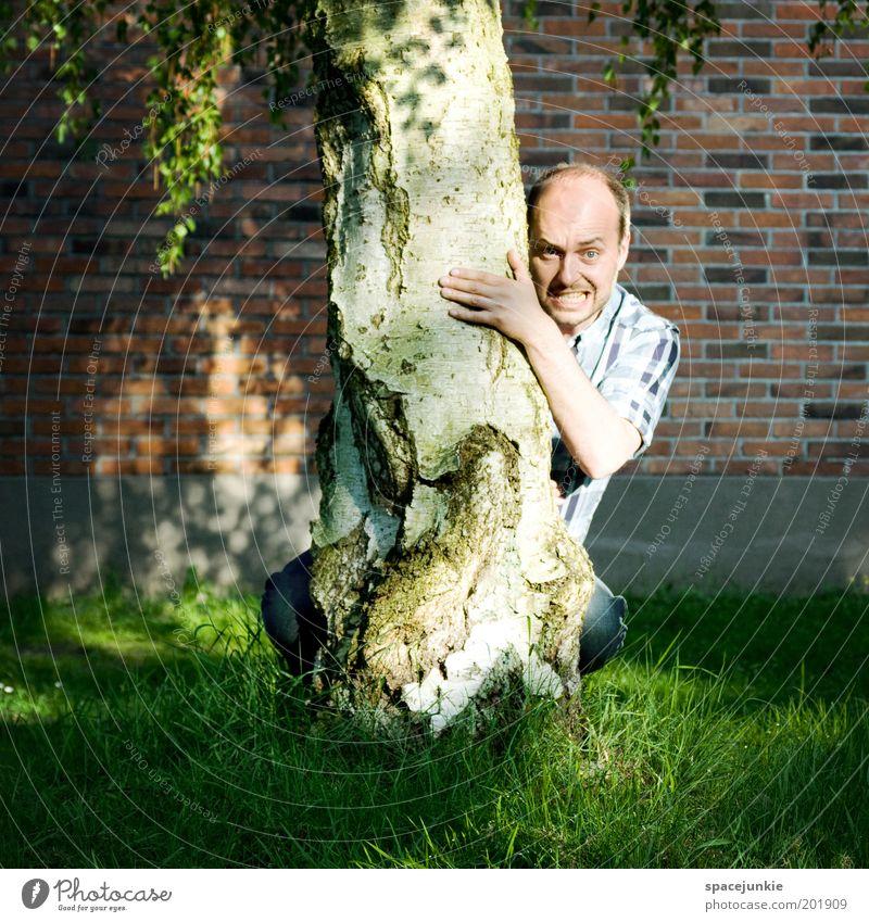 Behind the tree Mensch Baum Erwachsene Gesicht Kopf lustig maskulin beobachten skurril verstecken Freak Ärger Mann Versteck 30-45 Jahre