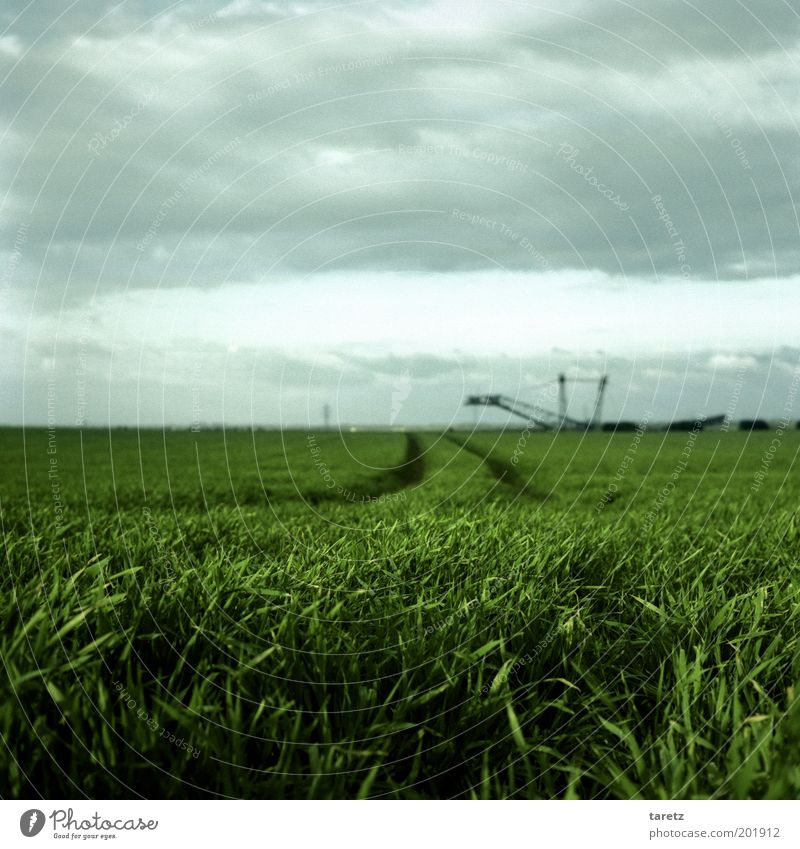 Das Monster von Loch Garzweiler Himmel grün Landschaft Feld Wind Umwelt Horizont Wandel & Veränderung Vergänglichkeit Landwirtschaft Ackerbau Gegenteil