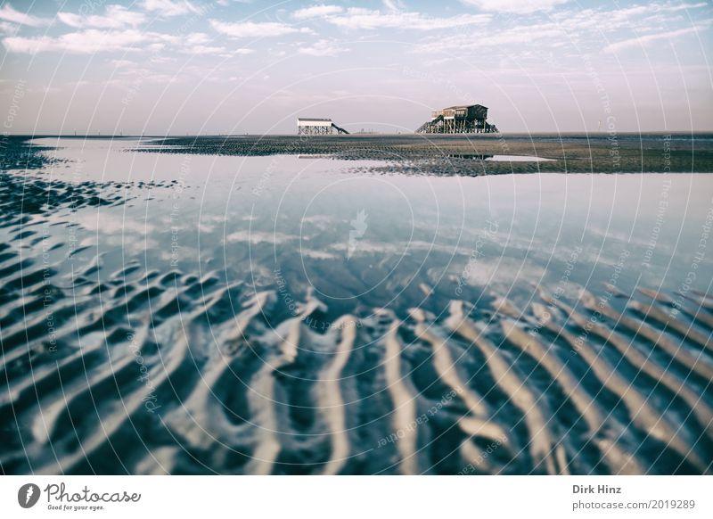 Warten im Watt Natur Ferien & Urlaub & Reisen Wasser Sonne Meer Erholung Ferne Strand Umwelt Küste Sand Horizont Schönes Wetter Unendlichkeit Fernweh Nordsee