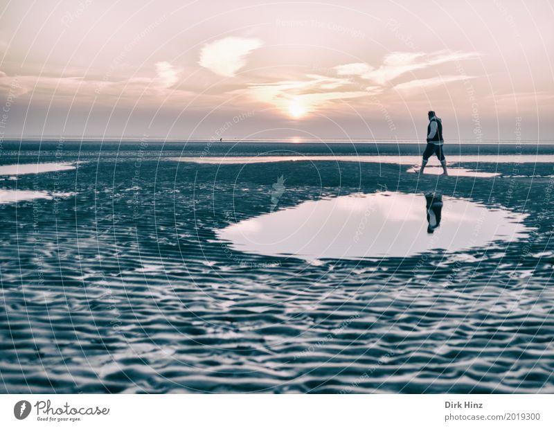 Schlickrutscher Natur Ferien & Urlaub & Reisen Mann Sonne Meer Erholung Einsamkeit Strand Umwelt Küste Freiheit Tourismus Sand Horizont Schönes Wetter