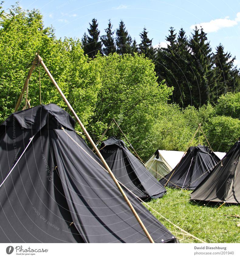 Pfadfinderlager Himmel Natur blau Ferien & Urlaub & Reisen grün Sommer Baum Pflanze schwarz Wald Landschaft Umwelt Wiese Frühling Gras Abenteuer
