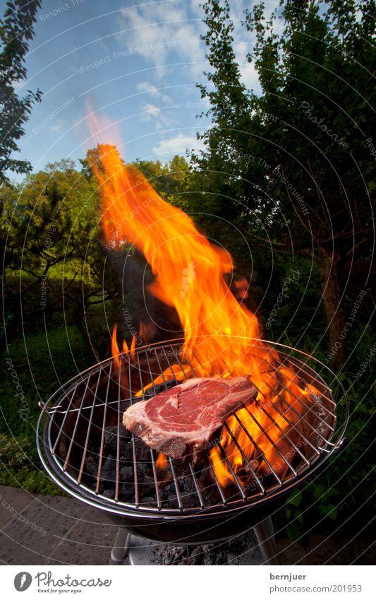 Angrillen Grill Fleisch Flamme Feuer brennen Steak Himmel roh Wolken Baum Garten Sommer Grillen Kohle Wärme Rauch orange Rindfleisch Tag Haushalt Gras Rost