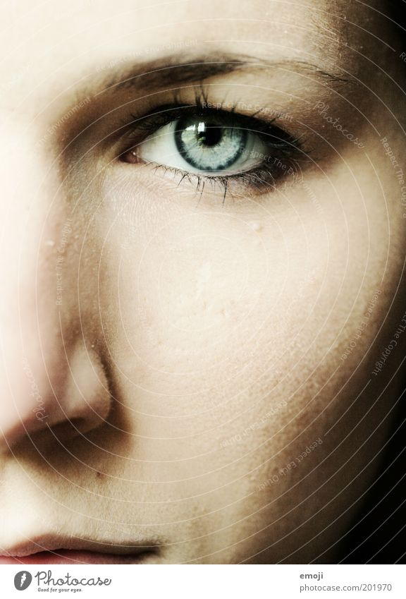 strong feminin Auge 1 Mensch 18-30 Jahre Jugendliche Erwachsene stark blau intensiv Blick Zukunft geradeaus direkt Gesicht Mut Ausdruck Gesichtsausdruck