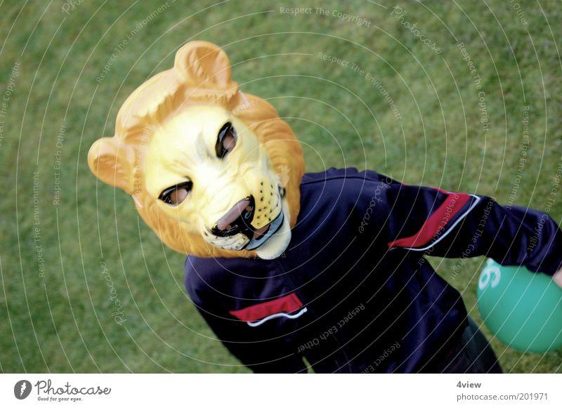 der Jogi ist los Freude Spielen Fan Mensch Kindheit 1 gehen frei blau gelb grün Stimmung Tapferkeit Identität Farbfoto Außenaufnahme Löwe Maske verkleiden