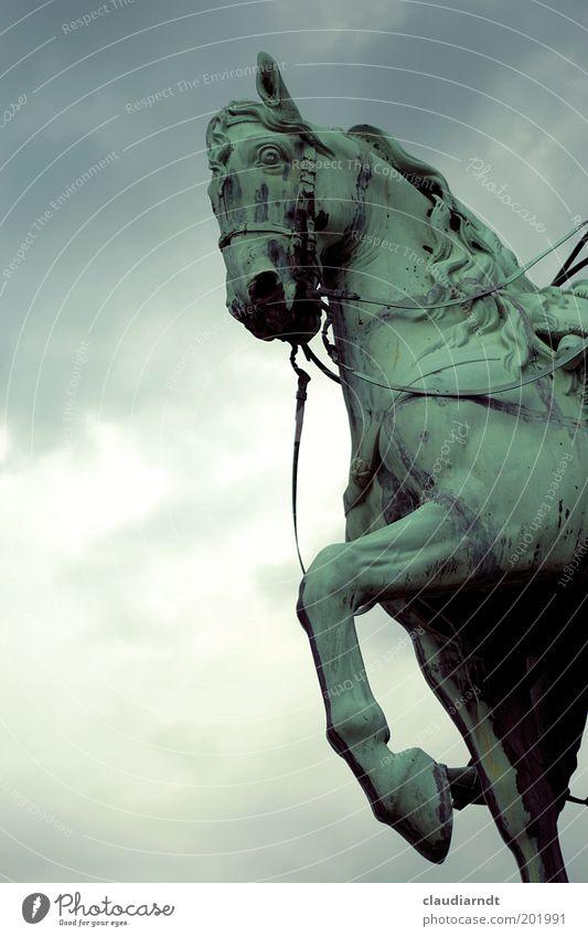 Grünschimmel Himmel grün Tier dunkel Metall Kunst Kraft elegant laufen bedrohlich Macht Pferd stark Denkmal Wahrzeichen Skulptur
