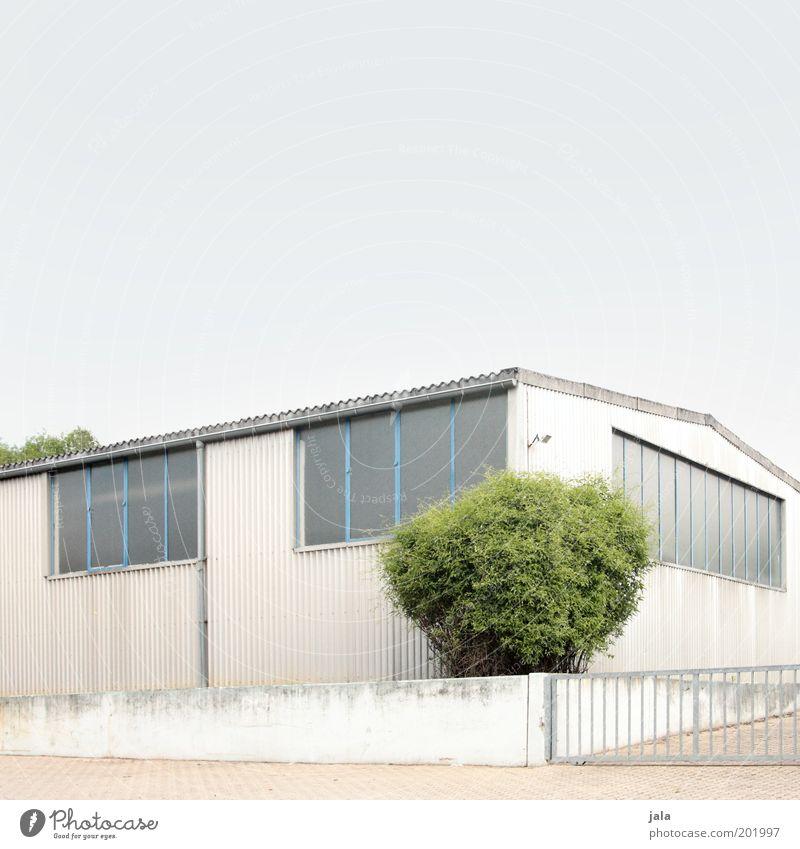 grüne ecke Himmel weiß Pflanze Arbeit & Erwerbstätigkeit Wand Fenster Mauer Gebäude hell Industrie Fabrik Sträucher unten Handwerk Bauwerk