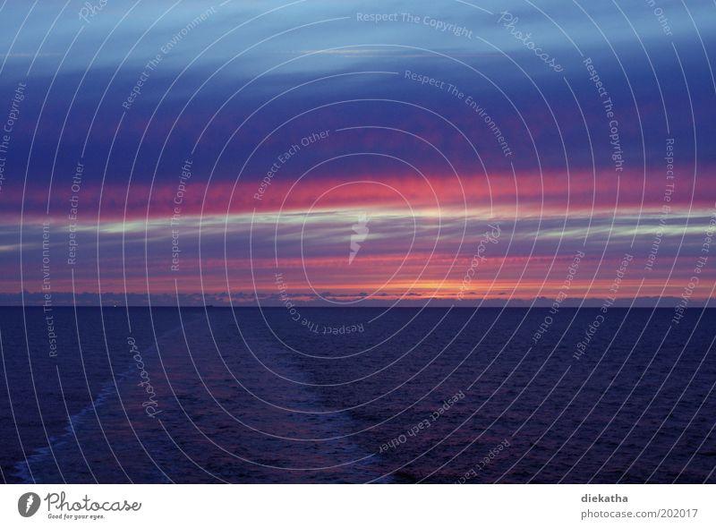 ...eine Seefahrt, die ist schön.... Wasser Horizont Sonnenaufgang Sonnenuntergang Wellen Nordsee Meer Kreuzfahrt genießen träumen rosa Romantik Farbfoto