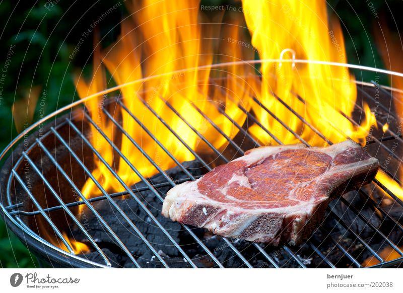 Feuer & Flamme Sommer Wärme orange Kochen & Garen & Backen Rauch Rost Grillen brennen Fleisch Gitter Grillrost roh