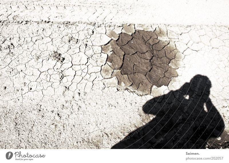brütende Hitze Natur Tod Wärme hell Umwelt Erde trist bedrohlich Klima Wüste heiß trocken Fotograf Riss Fotografieren Dürre