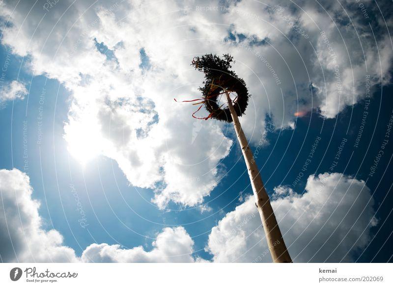 Maibaum 1. Mai Himmel Wolken Sonne Sonnenlicht Frühling Sommer Schönes Wetter Wärme Baum gigantisch groß Unendlichkeit hoch blau weiß flattern Wind