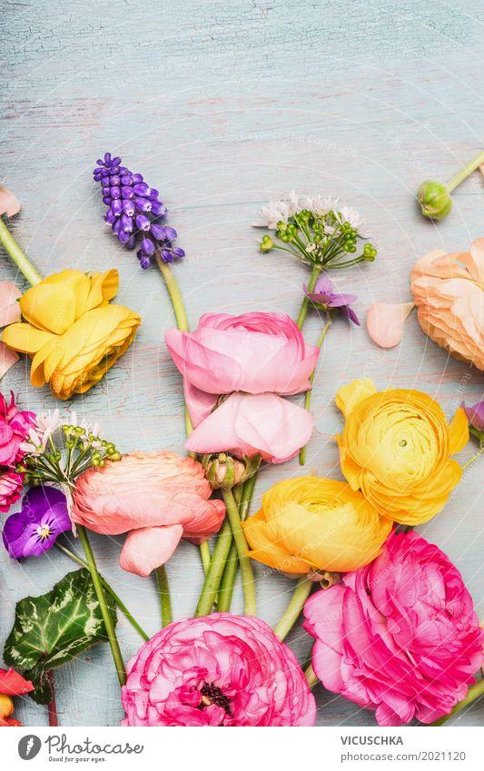 Bunte Sommer Blumen für Blumenstrauß Stil Design Dekoration & Verzierung Muttertag Hochzeit Geburtstag Natur Pflanze Frühling Blatt Blüte Blühend Liebe rosa