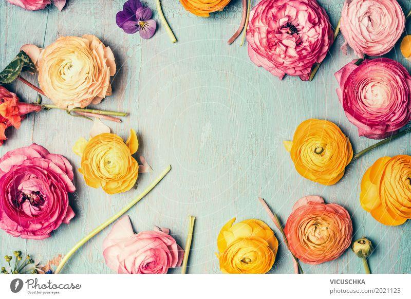 Rahmen mit bunten Blumen Stil Design Dekoration & Verzierung Feste & Feiern Muttertag Geburtstag Natur Pflanze Rose Blatt Blüte Blumenstrauß Liebe rosa