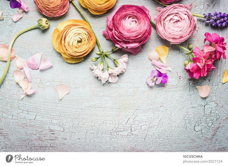 Shabby Chic Blumen Natur Pflanze Sommer Blatt Blüte Hintergrundbild Stil Garten Feste & Feiern Design rosa Dekoration & Verzierung Geburtstag Geschenk Rose
