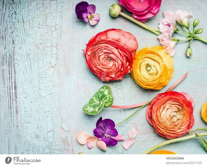 Sommer Blumen Composing Natur Pflanze Sommer Blume Liebe Hintergrundbild Stil Garten Feste & Feiern Design rosa Dekoration & Verzierung Geburtstag Blühend Rose Blumenstrauß