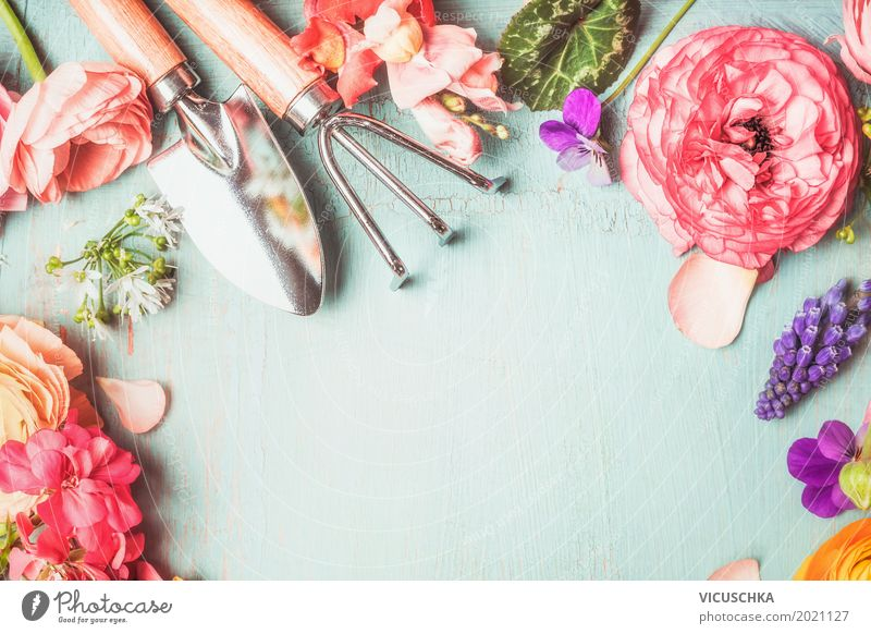 Gartenarbeit Geräte mit Blumen Natur Pflanze Sommer Blatt Blüte Frühling Hintergrundbild Stil Design Freizeit & Hobby Dekoration & Verzierung Rose Blumenstrauß